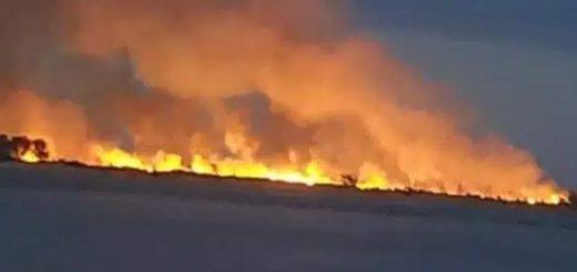 Turistas irresponsables hicieron un asado y provocaron un desastroso incendio en Paso de la Patria