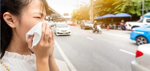 Coronavirus: preocupación en la OMS por la enfermedad que se transmite entre humanos, ya causó seis muertes en China y hay casi 300 personas infectadas en otros países