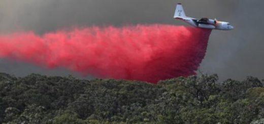 Australia: se estrelló un avión que combatía incendios y murieron tres personas