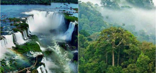 Cataratas de Iguazú y Selva Misionera, estandartes de la promoción de Argentina en la Feria de Turismo de Madrid