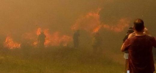 50 hectáreas ardieron en Villa Gesell: el fuego afectó casas y los vecinos se autoevacuaron