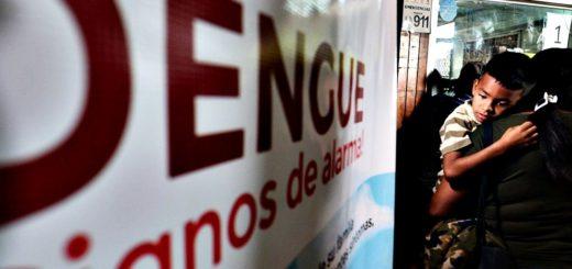 Alerta dengue: hasta inicios de 2020 en Misiones se registraron 24 casos, 17 de ellos confirmados