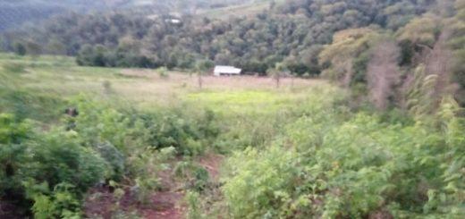 Macabro hallazgo en Piñalito Norte: encontraron el cadáver de una mujer semienterrado a pocos metros de su vivienda