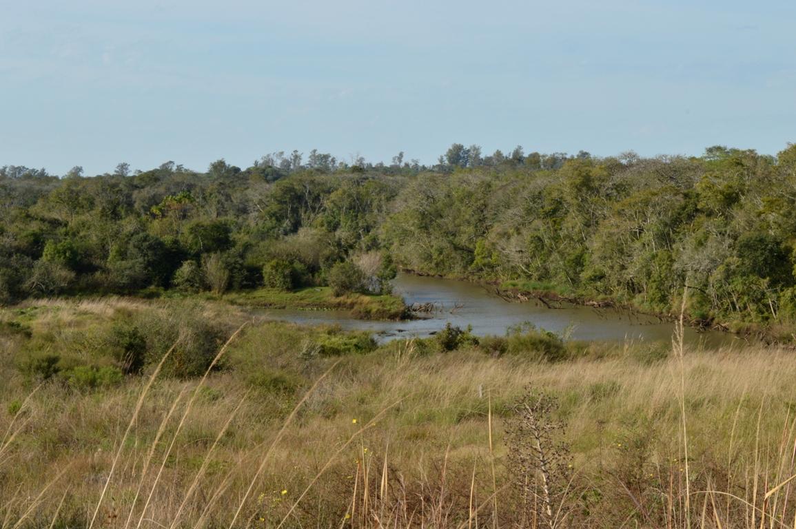 Candelaria: este domingo realizan un encuentro en la Reserva Natural Urutaú por el Día Mundial de los Humedales