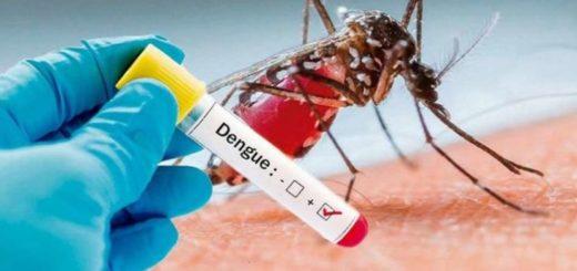 Confirman 45 casos de dengue en Formosa y 26 en Buenos Aires