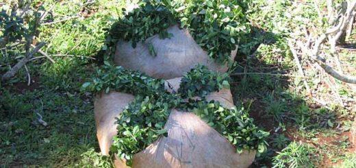 Productores se reunieron con autoridades provinciales por el constante robo de yerba mate y ganado