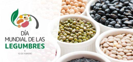 Día Mundial de las legumbres: ¿Cuáles son sus principales aportes nutricionales?
