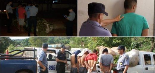 Pese a que los productores amenazaron con balear a los ladrones, continúan los robos de yerba mate