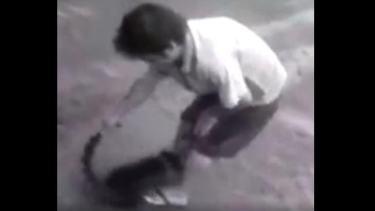 """El """"Mismísimo"""" subió un video con un coatí y fue acusado en las redes de maltrato animal"""