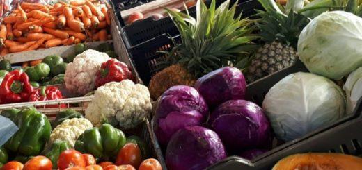 Las ofertas del Mercado Concentrador de Posadas: quesos misioneros, carnes y verduras, productos frescos y económicos