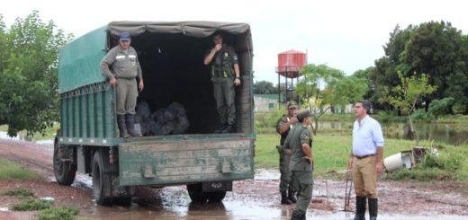 Chaco: decretan 30 días de emergencia ante la grave situación climática y social que enfrentan municipios de la zona Sudoeste de la provincia