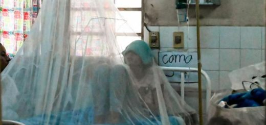 Salud: los ministros de las carteras sanitarias del Mercosur se reunirán para analizar las epidemias de dengue, sarampión y coronavirus