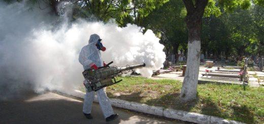 En Buenos Aires hay 96 casos de dengue confirmados
