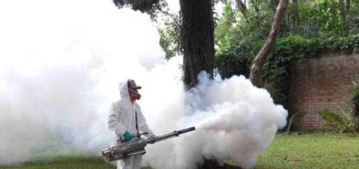 Salud: intensa jornada en Misiones contra el dengue