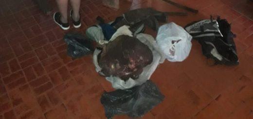 Colonia Polana: tres cuatreros detenidos por faenar una vaca