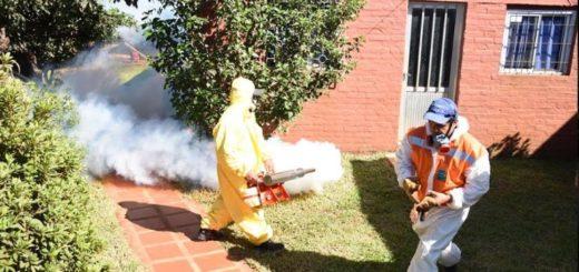 Se concretó el Operativo Interinstitucional de Descacharrizado y Concientización Contra el Dengue en Oberá
