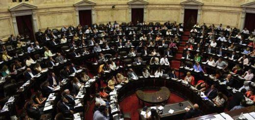 Con el aporte sustancial de los diputados nacionales por Misiones, se aprobó por 128 votos la reforma en jubilaciones de privilegio