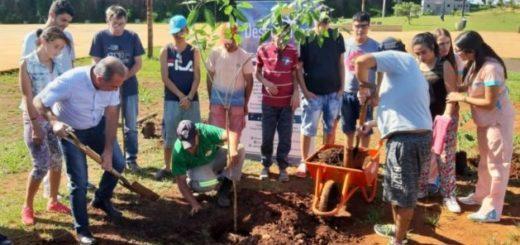El municipio de Posadas promoverá la arborización de espacios públicos junto a asociaciones juveniles y escuelas