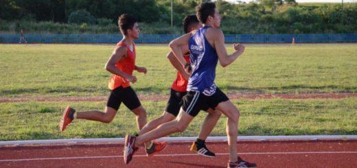 Dictarán clases gratuitas de atletismo en la pista sintética del CePARD