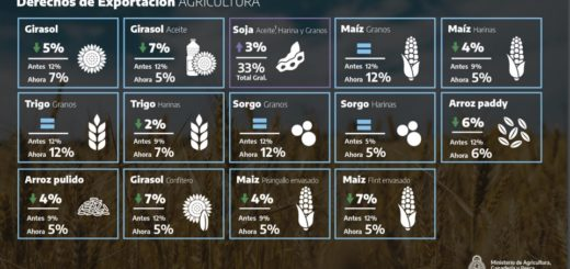 El Gobierno aumentó 3 puntos porcentuales las retenciones a sojeros que producen más de mil toneladas