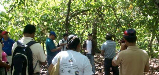 Una iniciativa de restauración de bosques en Misiones será una experiencia compartida en Perú en una jornada de intercambio sobre implementación de proyectos REDD+ en América Latina