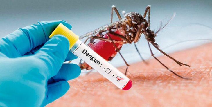 En el país se registraron casi 3 mil casos de dengue y 158 de sarampión, según informe nacional