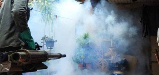 La Municipalidad de Posadas profundiza la campaña contra el dengue