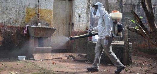 La municipalidad de Posadas combate al dengue desde todos los frentes posibles