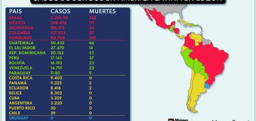 Grave: mientras crece el alerta por el coronavirus, en la región ya hay más de 600 mil casos de dengue y más de un centenar de muertos entre Brasil y Paraguay este año
