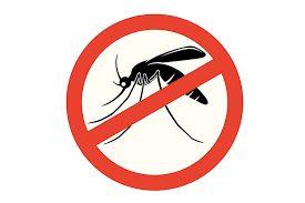 Combate al Dengue: Misiones propuso medidas de alcance nacional en relación a precios, provisión y abastecimiento de repelentes