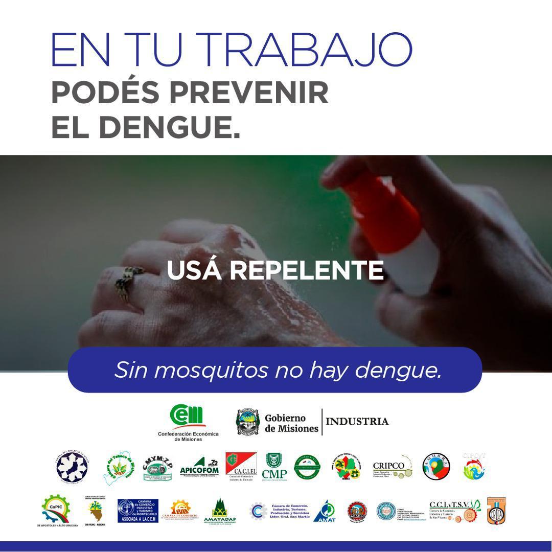 """Haene, sobre la campaña de la CEM contra el dengue: """"No pedimos nada extraordinario, pero tenemos que ser conscientes del problema"""""""