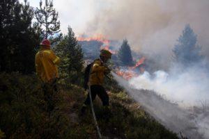 Patagonia: un incendio forestal en Bariloche arrasa varias hectáreas y está fuera de control