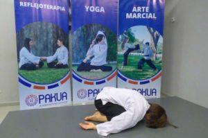 El arte del bienestar: ¿Sabías que a través del yoga podes aliviar los dolores menstruales?