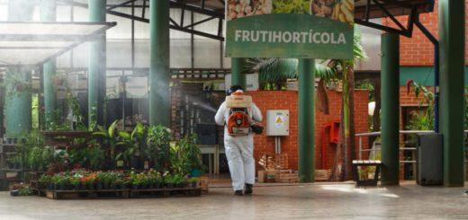 Fumigan las instalaciones del Mercado Concentrador en Posadas