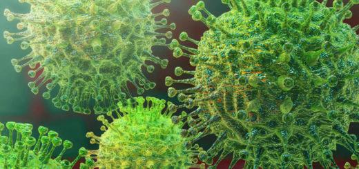 En Misiones el número de sospechosos por coronavirus descendió a 2 y los infectados por dengue son 237