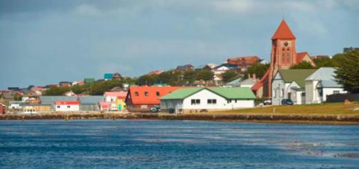Argentina le ofreció al Reino Unido enviar alimentos, medicamentos y test a los habitantes de Malvinas