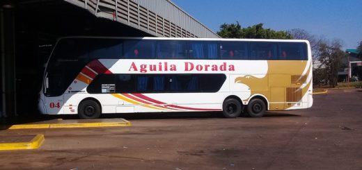 Coronavirus: por decisión del Gobernador Oscar Herrera Ahuad continuará suspendido el transporte de media distancia en Misiones