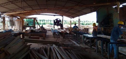 Coronavirus: el Gobierno de Misiones realiza inspecciones al sector agroindustrial
