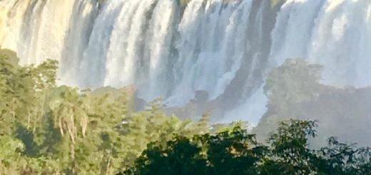 En silencio y con los animales apoderándose del Parque: así están las Cataratas del Iguazú en esta cuarentena