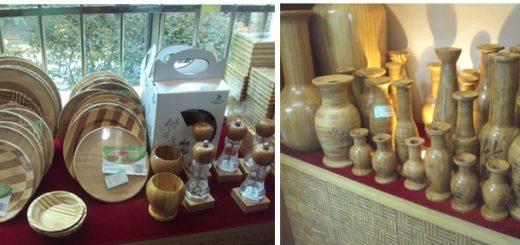 Avanzan investigaciones sobre las alternativas del cultivo de bambú en Misiones