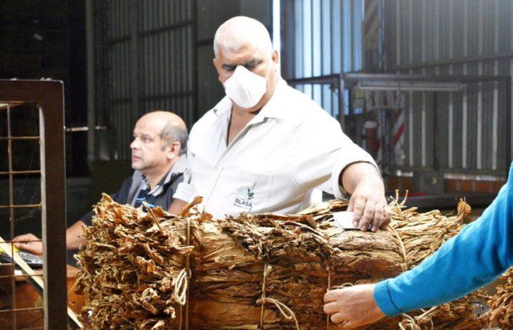 Tabacaleros fijaron con los productores el aumento en el  precio de 59,95%