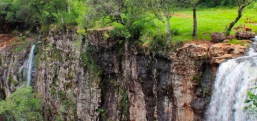 Cuarentena: el Ministerio de Turismo de la Provincia de Misiones ofrece capacitaciones online