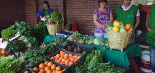 """Cuarentena: """"De la chacra a tu mesa"""", la campaña de Agricultura Familiar para fomentar la compra online de productos misioneros"""