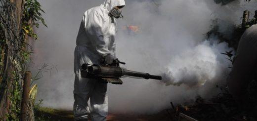 Posadas: se intensifican los operativos de fumigación y concientización contra el dengue