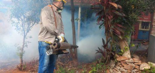 En toda la provincia continúan las acciones de prevención contra el dengue