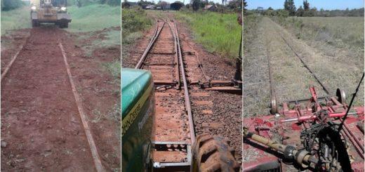 El regreso del tren a Misiones: los trabajos de reacondicionamiento de la línea Urquiza llegaron hasta Garupá