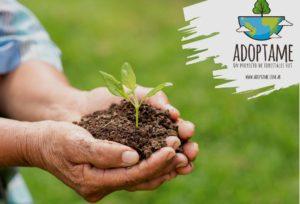 """Una acción ambiental colectiva propone Forestales Hut con el programa """"Adoptame"""" que promueve proyectos de reforestación y conservación de la Selva Misionera"""