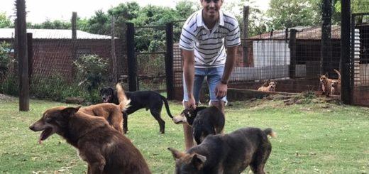 Los animales de El Refugio también son víctimas de la pandemia: hoy más que nunca ¡Ayudanos a cuidarlos!