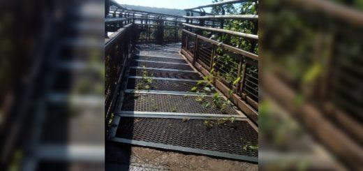 """Coronavirus: el sector privado de Iguazú advierte que vive una """"catástrofe económica"""""""