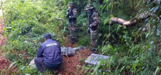Prefectura decomisó un cargamento de más de 190 panes de marihuana en Puerto Rico